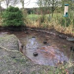 Cleared pond