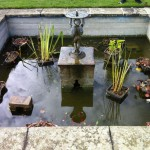 Formal pond before fibreglass re-line