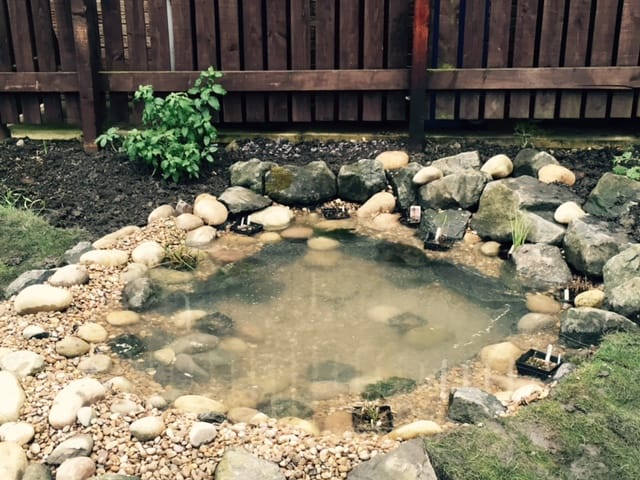 Gallery pond works for Koi pond builders yorkshire