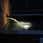 Lit water chute pond return